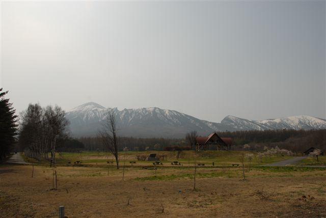20105255_340_3