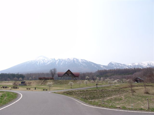 20105255_287